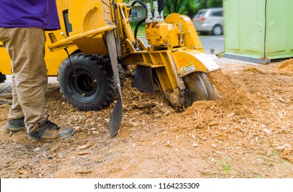 Man cuts a stump grinder in action