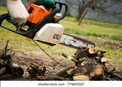 The man cuts the tree with a chainsaw. Cut trees with a chainsaw.