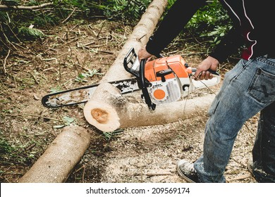 Man cuts tree with chainsaw. Thailand.
