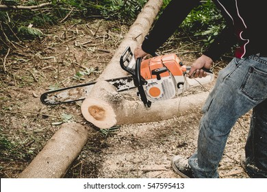 Man cuts tree with chainsaw. in Thailand.