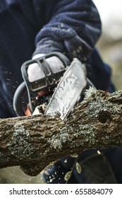 Man cuts wood with a chain saw