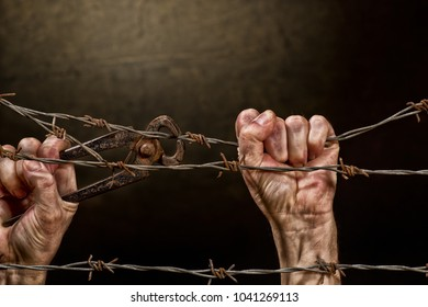 Man is Cutting a Fence of Barbed Wire