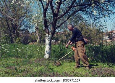 Man cutting grass under blooming tree. Selective focus