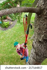 Man cutting Tree Branch with extension saw