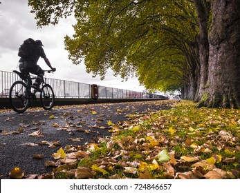 Man cycling on the Thames Path in Wandsworth Park, close to Putney in London with autumn leaves