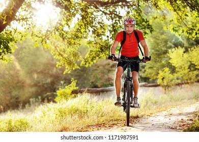 Man cycling under the tree branches