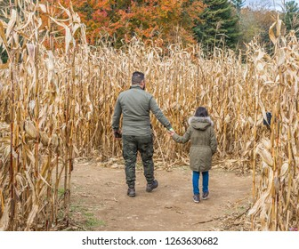 A man and daughter walking away in a cornfield