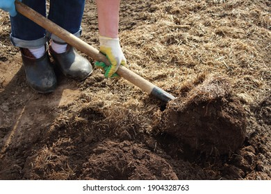 A man is digging the earth with a shovel in the garden. Agricultural work. Selective focus. Close-up. Background.