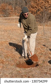 Man digging a hole in the ground to plant a fruit tree in early spring
