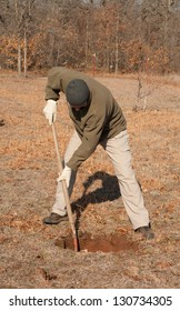 Man digging a hole in the ground to plant a tree in early spring