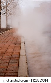 Man disappearing into the mist on a red paved sidewalk and barren trees.