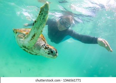 man dives with wild turtles in a clear ocean near the island of Mauritius