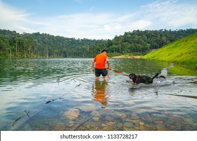 Man and dog having fun in the lake