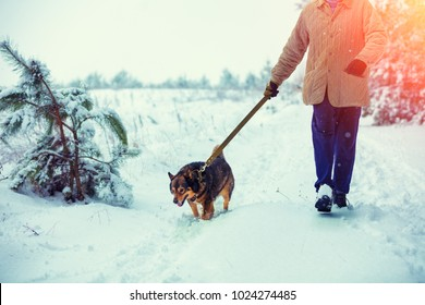 Man with dog on a leash walking on snowy country road in winter