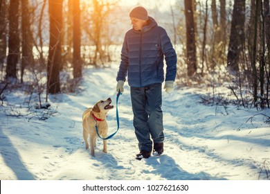 Man with dog on a leash walking on snowy pine forest in winter