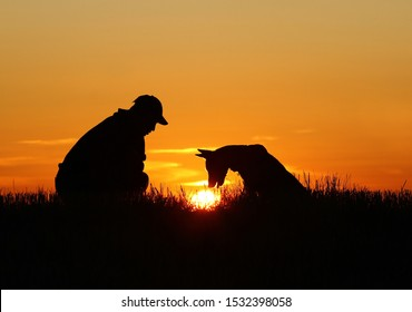 Man and dog on sunset background, Belgian Shepherd Malinois, dog and man silhouette, incredible sunset, found the sun in the grass