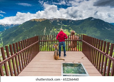 Man and dog overlooking at Andorra from observation deck Roc Del Quer