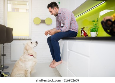 Man and a dog sitting in modern white kitchen