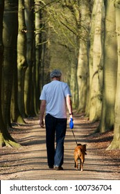 Man and dog walking in forest lane