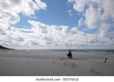 man with dog walking on beach