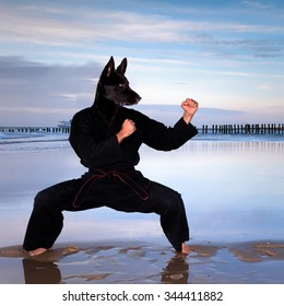 Man with a dog's head in combat Guard