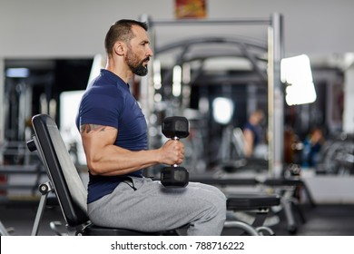 Man doing biceps curl with dumbbells in the gym