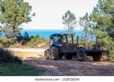 A man drives a blue tractor on a dirty road with a sea view and a man sits next to him