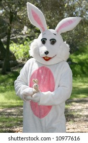 man in a easter bunny costume