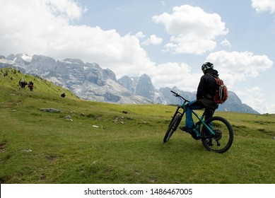 man with an electric bike, e-bike, ebike, mtb, observe mountains of Tosa and Brenta Peak, meadow, Dolomites, Madonna di Campiglio, summer, sport, adventure, travel, Alps, Trentino, Italy