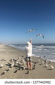 A man enjoying feeding seagulls at the seashore.