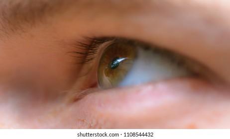 Man Eye Macro, close up of male eye, shallow depth of field
