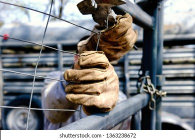 Man fencing with rugged work gloves closeup, shows labor on rural farm.
