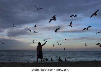 Man figure with seagulls