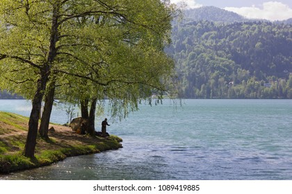 A man fishing on the shore of the lake Bled, Slovenia