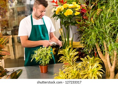 Man florist reading price bar-code reader flower shop plant
