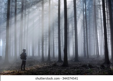 Man in foggy autumn forest with blue light