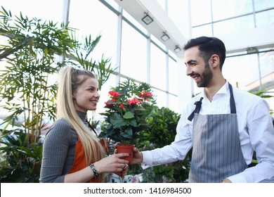 Man Gardener Giving Red Flower in Pot to Woman. Smiling Girl Florist Taking Blooming Plant in Flowerpot from Male. Cheerful Workers in Apron at Store with Green Domestic Trees. Shop for Domestic Flora