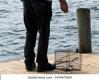 A man getting ready to throw his crab trap into the water off of a wooden pier.