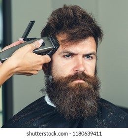 Man getting trendy haircut at barber shop. Male hairstylist serving client, making haircut using machine and comb. Master cuts hair and beard of men in barbershop, hairdresser makes hairstyle for man
