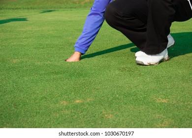 Man golfer keep a golf ball.