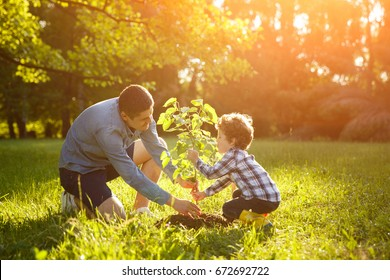 Man in gray shirt and boy in check shirt setting plant in green park under sun.