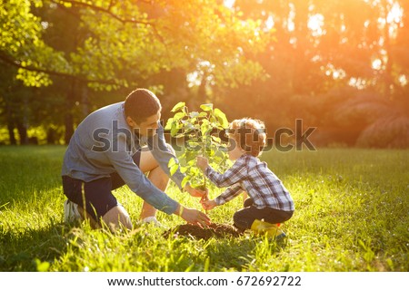 51035a1d Man in gray shirt and boy in check shirt setting plant in green park under  sun