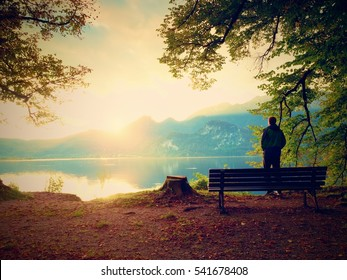 Man in green outdoor windcheater walk at lake bank.  Empty wooden bench, tree stump at mountain lake. Bank under beeches tree, mountains at horizon and in water mirror