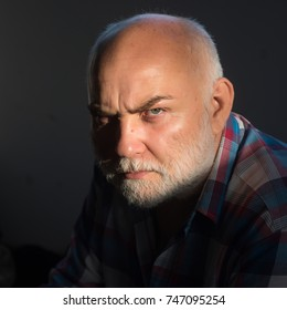 Man with grey beard, frown brows on serious face with bold forehead head sit in plaid shirt. Hair loss problem concept