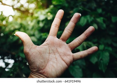 Man hand five fingers nature green background