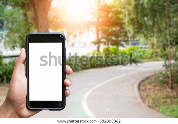 man hand holding smartphone against spring green background
