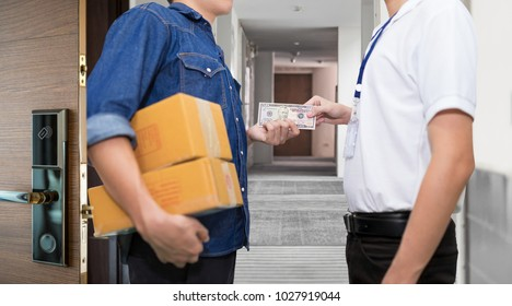 Man hand holds american dollar money and pay for the package order. Delivery service concept. Payment by cash for express delivery.