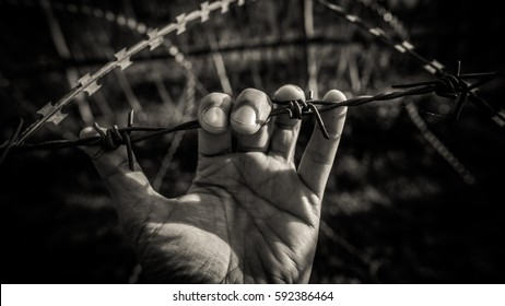 Man handles barbed wire without the individual freedom life in black and white picture.