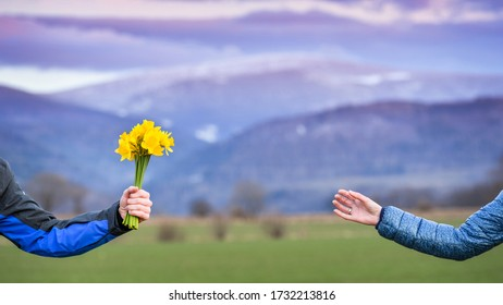 The man hands the woman a bouquet of yellow narcissus against the backdrop of snowy mountains. The colorful rays of the sun illuminate the mountain peaks.