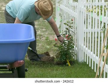 man in hat gardening